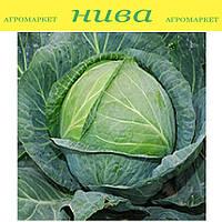 Центурион F1 семена капусты белокачанной средне-поздней Clause 1 000 семян