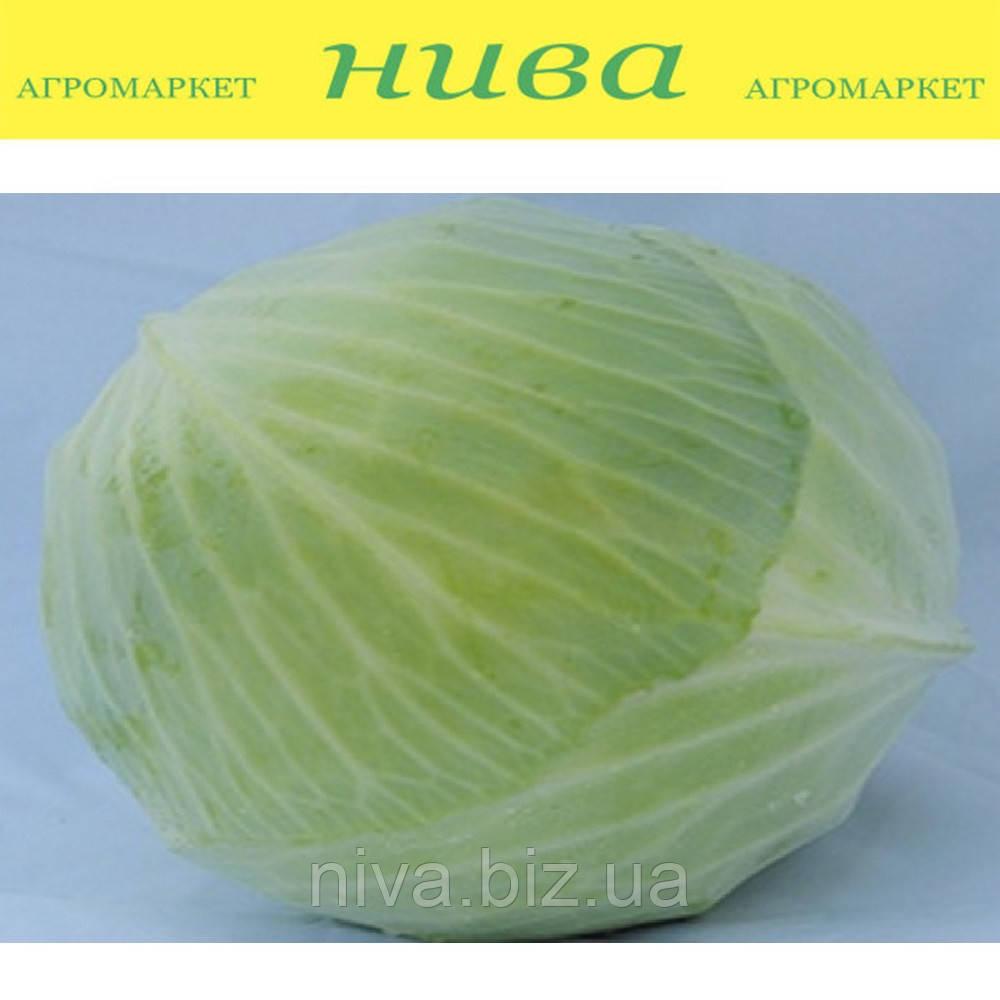 Валентина F1 семена белокачанной капусты Semenaoptom 10 000 семян