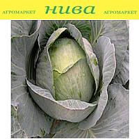 Кентавр F1 cемена капусты белокачанной поздней Lucky Seed 2 500 семян