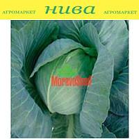Киклоп F1 семена капусты белокачанной поздней Moravoseed 2 500 семян