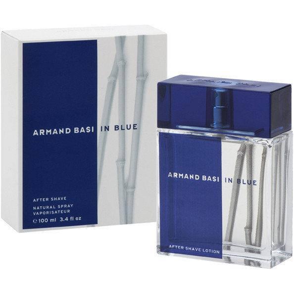 Armand Basi In Blue (Арманд Баси Ин Блу), мужская туалетная вoда, 100 ml