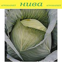 Экстра F1 семена капусты белокачанной поздней Semenaoptom 1 000 семян