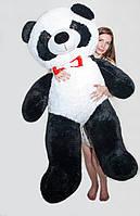 Плюшевый медведь  Панда 165 см