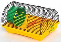 Клетка Бунгало-1 для грызунов, цельная, цинк 330х230х200 мм, краска