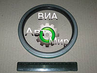 Сальник ступицы задней КАМАЗ ЕВРО (140x170) (пр-во Россия) 140-170-17
