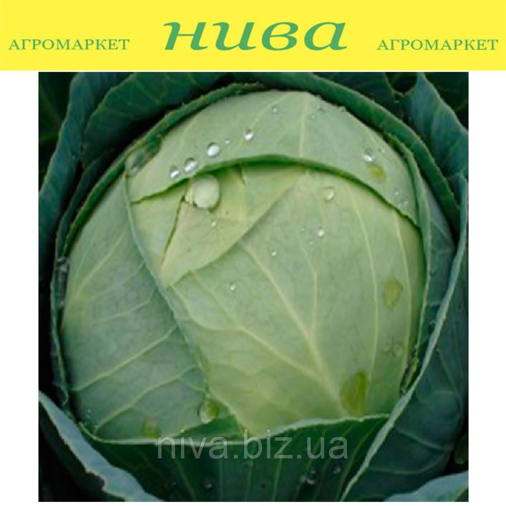 Тюркис семена капусты белокачанной поздней Satimex 100 г