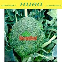 Аполена F1 семена капусты брокколи Moravoseed 2 500 семян