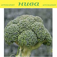 Корос F1 семена капусты брокколи Clause 2 500 семян