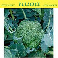 Регги F1 (Reggi F1) семена капусты брокколи калибр. Rijk Zwaan 2 500 семян