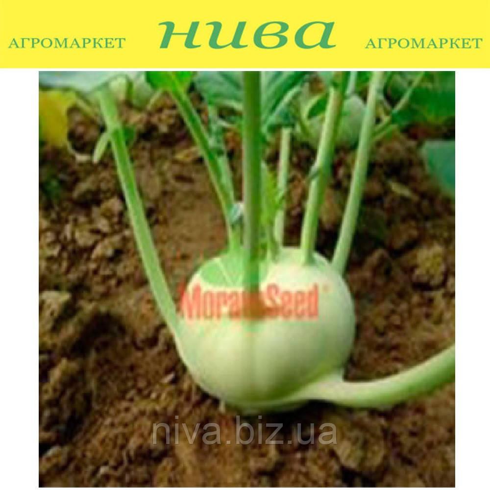 Креф F1 семена капусты кольраби Moravoseed 2 500 семян