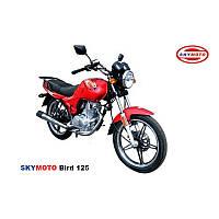 BIRD 125  (легкий мотоцикл) (новая резина, защитные дуги)