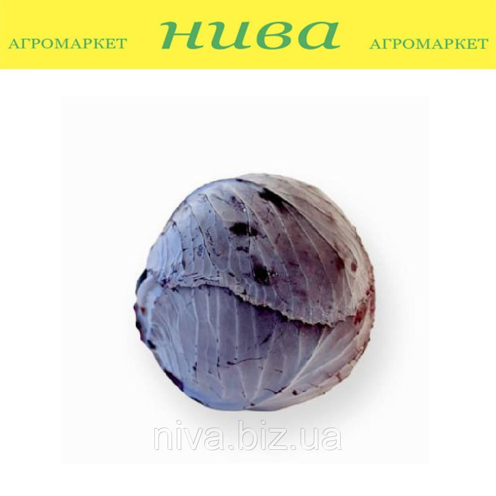Рексома F1 (Rexoma F1) семена капусты краснокачанной калибр. Rijk Zwaan 2 500 семян