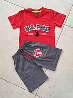 Летний Костюм для Мальчика U.S. Polo Цвет Красный  Рост 98-140 см