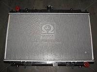 Радиатор MAXIMA QX 20/30 MT 94-99 (Ava) DN2188