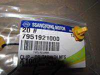 Пистон (пр-во SsangYong) 7951921000