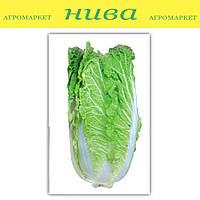 Вілі F1 насіння капусти пекінської ранньої NongWoo Bio 1 000 насінин