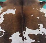 Шкіра буйвола велика з шоколадними плямами, фото 2