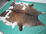 Шкіра буйвола велика з шоколадними плямами, фото 6