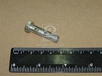 Болт штуцера М8х1 L=31 мм (производитель ММЗ) 240-1104787-Б