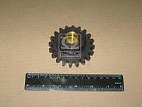 Шестерня компрессора (производитель Украина) А29.01.201А