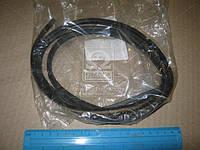 Уплотнитель стекла (пр-во Toyota) 5611760110