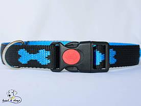 Ошейник, черно-голубой, 25мм(пластик)