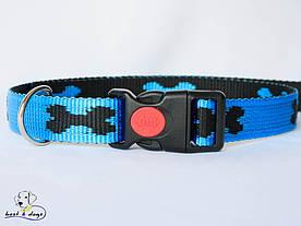 Нашийник, блакитний-чорний, 25мм(пластик)
