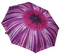 Стильный женский зонт 3565A purple