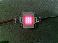 Фито светодиод 10вт (10w) 30В полный спектр 380-840нм