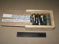 Ремкомплект шкворня УАЗ ХАНТЕР (латунн.вкладыш, палец с тавотницей) (производитель г.Ульяновск)