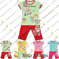 Детский костюм с бриджами для девочки от 1 до 5 лет (4096)