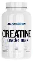 AllNutrition Creatine Muscle Max (250 гр.)