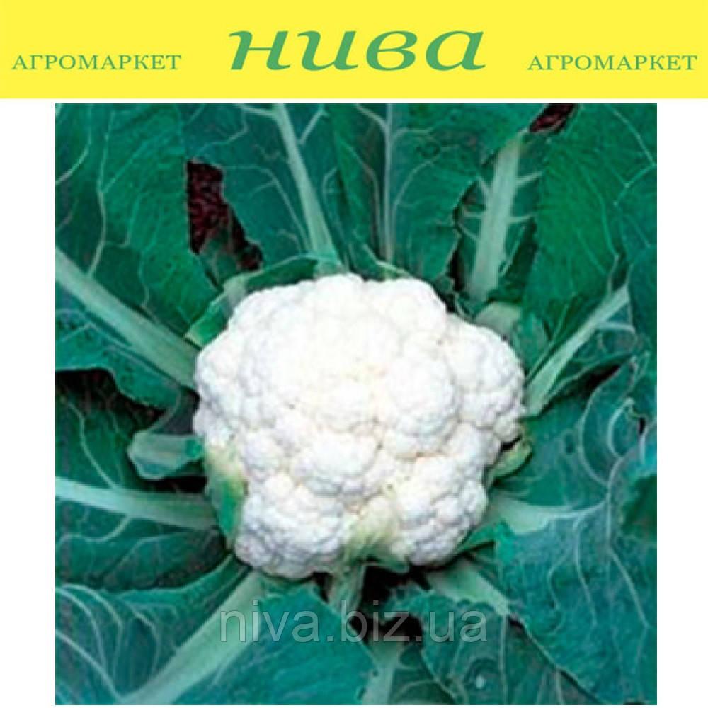 Фридом F1 (Freedom F1) семена капусты цветной поздней Seminis 1 000 семян