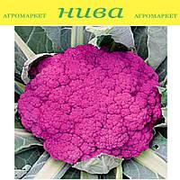 Пурпурная Сицилийская семена капусты цветной фиолетовой Euroseed 100 г
