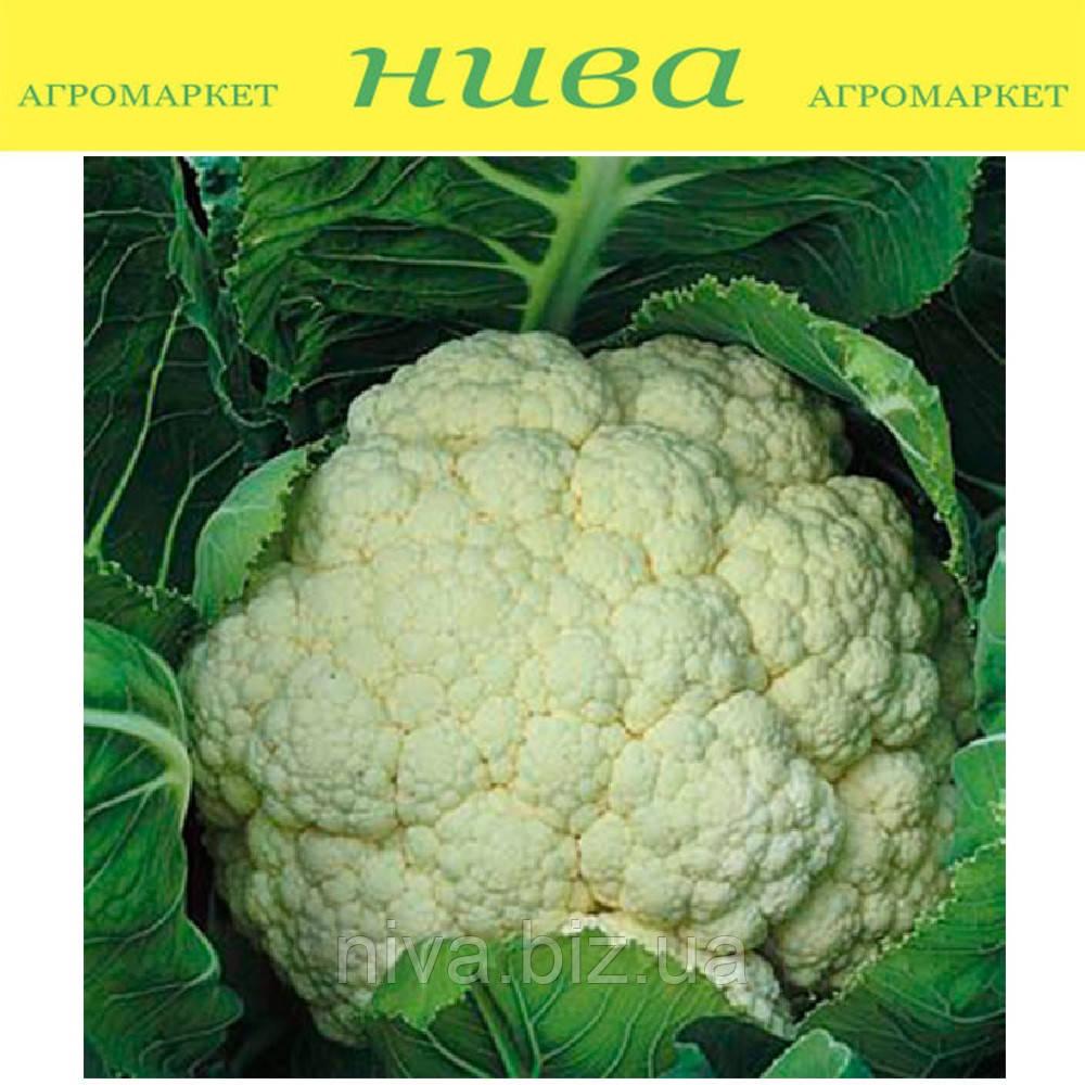 Опал (Opaal) семена капусты цветной ранней Rijk Zwaan  500 семян