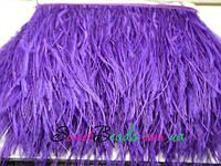 Страусиные перья на ленте, фиолет