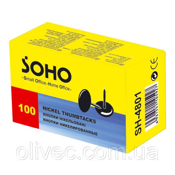 "Кнопки канцелярские ""Soho"" 100 шт."