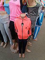Костюм спортивный для девочки  2315