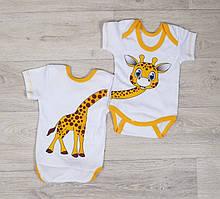 """Боди  """"Жирафчик"""" с коротким рукавом на рост:50-74 см"""