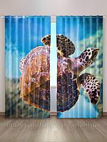 Фотошторы, Морская черепаха, Киев