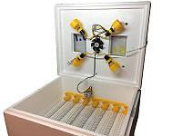 Инкубатор Теплуша 63 яйца | Лампы + Влагометр