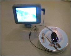 Подводная видеокамера Ranger c функцией записи