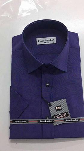 Стильная Мужская рубашка Pierre Pasolini приталенная  продажа, цена ... da10d5eccfa