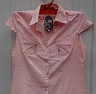 Блуза женская 54р