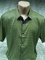 Рубашка мужская с коротким рукавом Enisse (разм. 2XL,4XL,5XL)