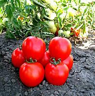 Семена томата Асвон F1 1000 шт Kitano Seeds /Китано Сидс