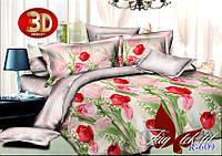 Двуспальный комплект постельного белья ранфорс R609 ТM TAG