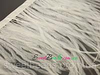 Страусиные перья на ленте, белый