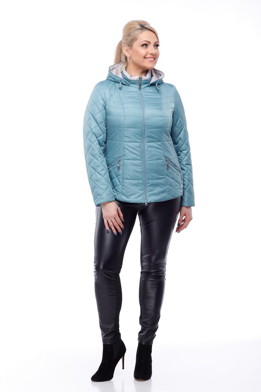 Голубая куртка весенняя больших размеров 50,52,54,56,58,60