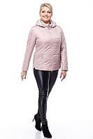 Куртка розовая на синтепоне больших размеров весенняя 50,52,54,56,58,60